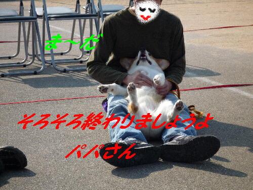 66_0061