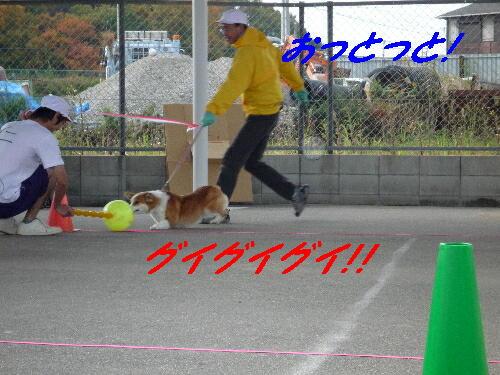 Wan_0071