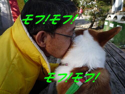 2010_0041