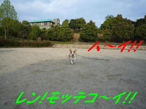 53_0051
